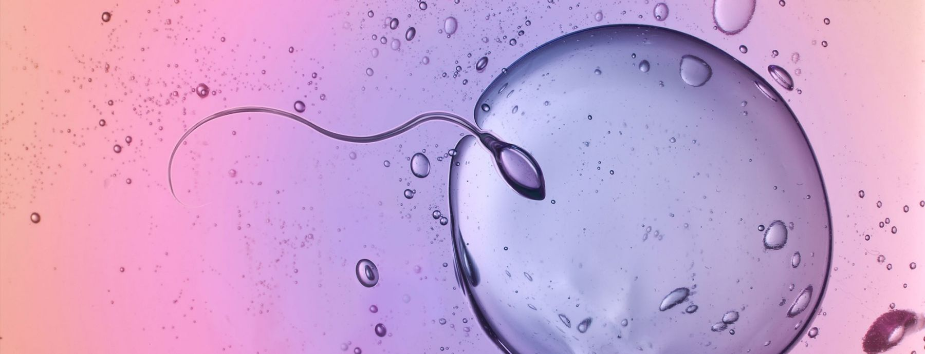 Reproductive Biology and Health hero image