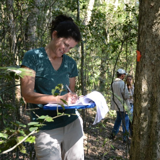 Erica Smithwick, professor of geography and director of the Center for Landscape Dynamics at Penn State, measures trees to quantify carbon stocks in the Dwesa-Cwebe nature reserve in Eastern Cape Province, South Africa. IMAGE: ERICA SMITHWICK LAB / PENN STATE